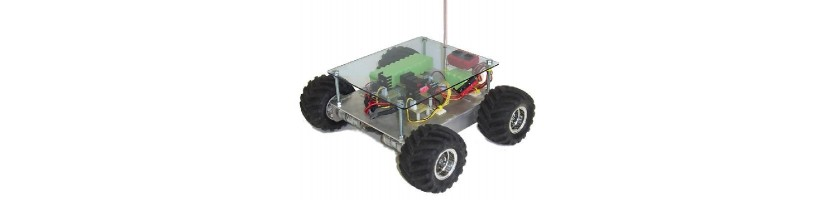Robotica Domotica