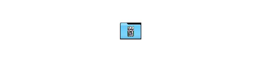Mikroelektronica
